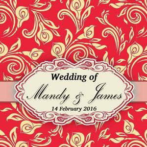 Mandy & James Wedding
